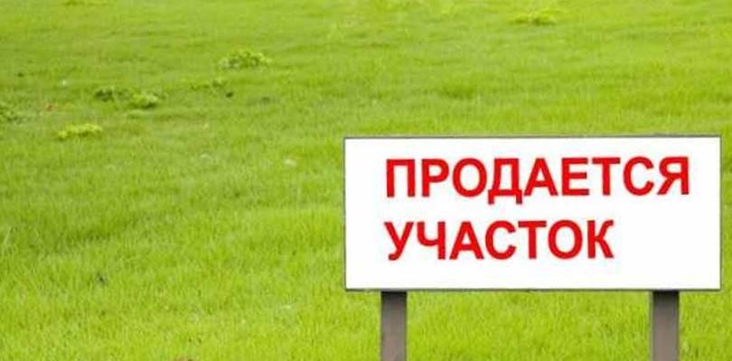 Подготовка документов для продажи земельного участка