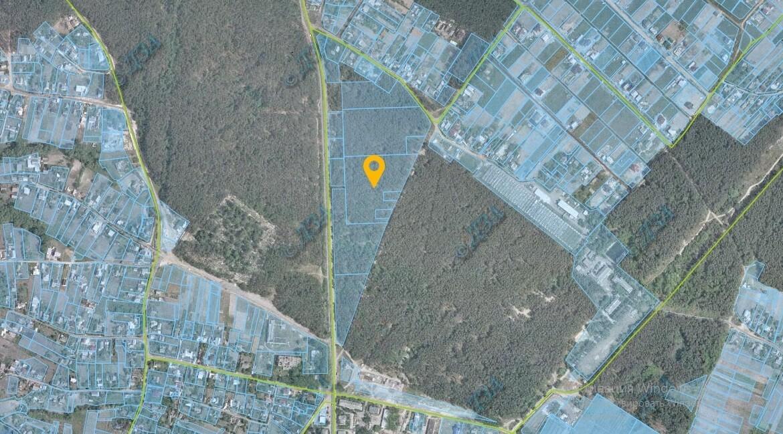 Продажа земельного участка, с. Белогородка Агентство Недвижимости Киев. Продать, купить недвижимость, квартиру, дом  1170x649